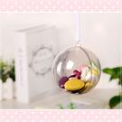 現貨 10cm透明球 壓克力球 塑膠球 包裝材料 diy手工材料 乾燥花球 娃娃球 金莎球 吊飾球