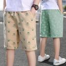男童短褲外穿夏季薄款2021新款中大童休閑夏裝兒童工裝五分中褲子