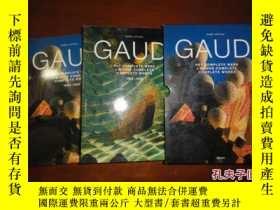 二手書博民逛書店Gaudi:罕見Complete Works Isabel Ar