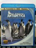 影音專賣店-Q00-952-正版BD【南極企鵝 Antarctica】-藍光影片