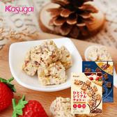 日本 春日井 一口穀物巧克力 35g 巧克力 穀物 草莓 柳橙 穀麥餅 餅乾