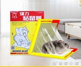 強力達豪粘鼠板老鼠貼捕鼠籠滅鼠器粘鼠貼 10片   優家小鋪