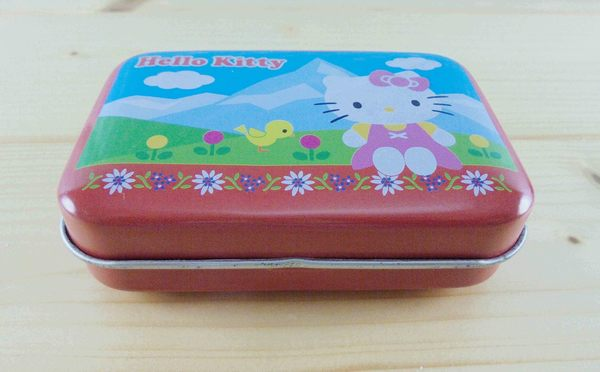【震撼精品百貨】Hello Kitty 凱蒂貓~KITTY方鐵盒-紅郊遊