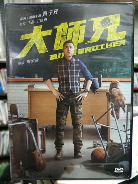 挖寶二手片-Z66-018-正版DVD-華語【大師兄】-甄子丹(直購價)