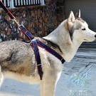 寵物牽繩-寵物胸背帶狗鍊子狗狗牽引繩小型犬泰迪狗繩子中型大型犬金毛用品 東川崎町