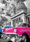 【拼圖總動員 PUZZLE STORY】古巴-粉紅色老爺車 義大利/Clementoni/鉑金系列/旅行/1000P