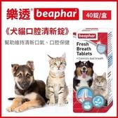 *WANG*荷蘭beaphar 樂透《犬貓口腔清新錠》40錠/盒 幫助維持清新口氣 幫助口腔保健