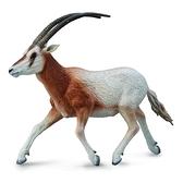 【永曄】collectA 柯雷塔A-英國高擬真動物模型-野生動物-彎角劍羚