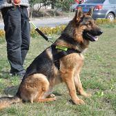 大型犬狗子金毛牽引繩拉布拉多反光帶狗背心式大狗胸背帶遛狗繩 交換禮物