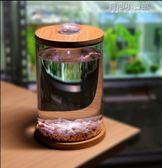 斗魚缸辦公室桌面創意微景觀賞迷你小型玻璃熱帶魚缸水族箱生態瓶YYJ 育心小賣館