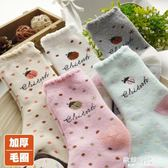 兒童襪子女童加厚毛圈可愛瓢蟲精梳棉襪卡通小孩寶寶非純棉襪5雙裝 歐韓時代