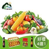 【鮮食優多】花蓮壽豐 有機蔬菜箱(加贈好禮4選1)
