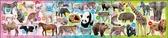 【拼圖總動員 PUZZLE STORY】動物園 日系/apollo社/兒童/8+12+16P/三片一組