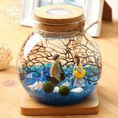 海藻球生態瓶迷你盆栽球藻微景觀玻璃瓶marimo辦公桌擺件生態球 歐韓時代