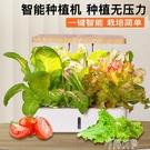 種植箱 智慧種菜機室內無土栽培蔬菜水培植...
