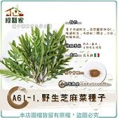 【綠藝家】A61-1.野生芝麻菜種子0.8克(約2700顆)