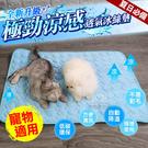 【XS號】極勁涼感透氣冰絲墊 寵物冰絲墊 冰絲墊 狗冰絲墊 貓冰絲墊 狗墊 貓墊 夏天涼墊 散熱