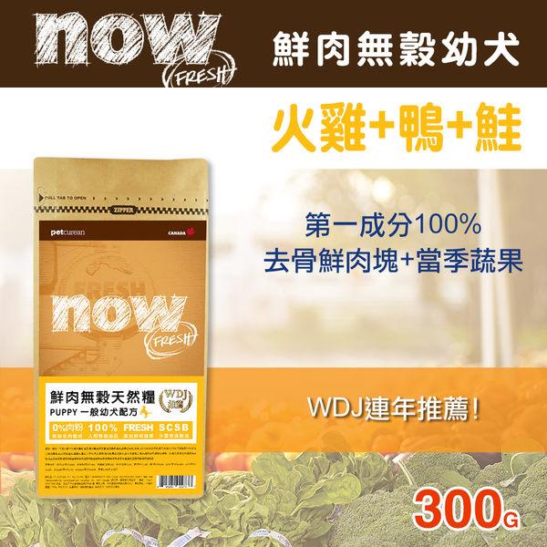 【毛麻吉寵物舖】Now! 鮮肉無穀天然糧幼犬配方-300克 狗飼料/WDJ推薦/狗糧