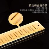 口琴  口琴初學者成人 入門學生兒童高級自學樂器 24孔復音口琴c調   艾維朵