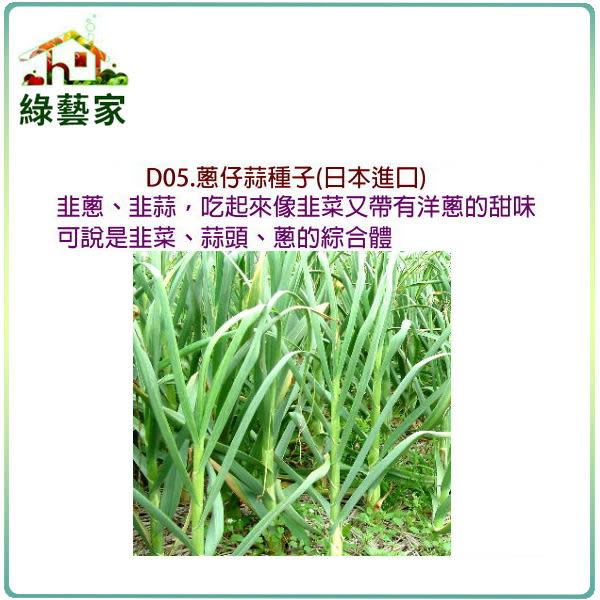 【綠藝家】大包裝D05.蔥仔蒜種子10克