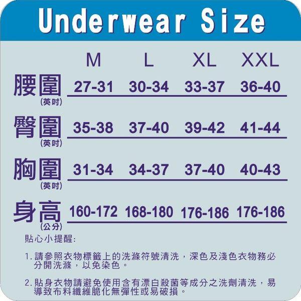 【Play Boy】莫代爾絲棉黃金比例素色彈性三角褲(超值2件組)-PN120