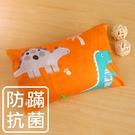 鴻宇 兒童枕 防蟎抗菌纖維枕 恐龍公園橘 美國棉授權品牌 台灣製1896
