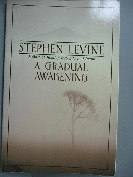 【書寶二手書T4/哲學_JJN】A Gradual Awakening_Levine, Stephen