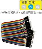 40Pin彩虹排線 + 雙頭杜邦端子 公頭 - 公頭( 線長20公分 )