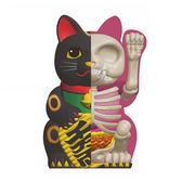 4D MASTER Fortune Cat 解剖公仔 招財貓 黑色 【鯊玩具Toy Shark】