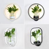 植物燈 現代簡約北歐創意客廳餐廳樓梯過道燈書房臥室床頭燈水培植物壁燈 618狂歡