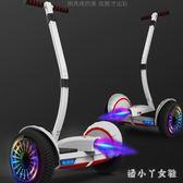 兒童自平衡車成年學生雙人智能體感越野10寸兩輪成人代步車TA4888【潘小丫女鞋】