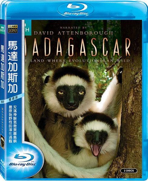 馬達加斯加 雙碟版 藍光BD (音樂影片購)