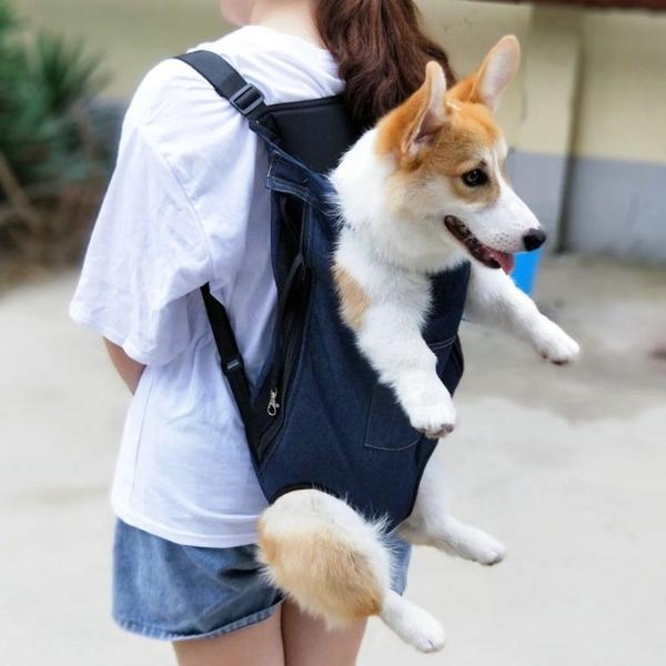寵物背包外出雙肩包貓咪狗狗