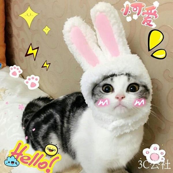 寵物頭套 套餐寵物帽子貓頭套泰迪狗狗兔子帽立耳小白兔造型帽可愛賣萌拍照