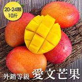 【外銷等級 】台南在欉紅愛文芒果*1箱組(20-24顆/10斤/箱)