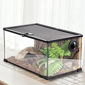 Reptizoo龜箱陸龜蜥蜴蛇守宮爬蟲箱寵物玻璃角蛙飼養箱鬃獅造景缸  ATF  夏季新品
