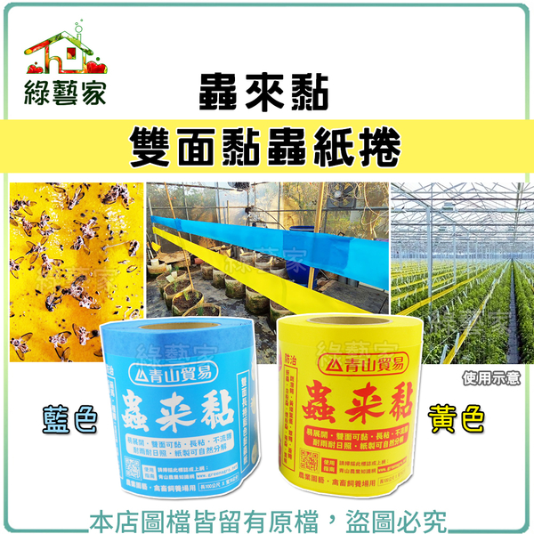 【綠藝家】蟲來黏-雙面黏蟲紙捲(黃色、藍色)15公分*100公尺(誘蟲黏紙.黏蟲紙)