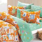 鴻宇 三件式單人薄被套床包組 歡樂園地桔 防蟎抗菌 美國棉授權品牌 台灣製2262