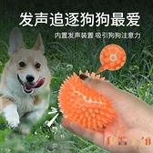狗狗磨牙耐咬玩具寵物解悶發聲球狗咬大型犬【倪醬小舖】