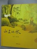 【書寶二手書T6/少年童書_QJM】山上的水_葉安德