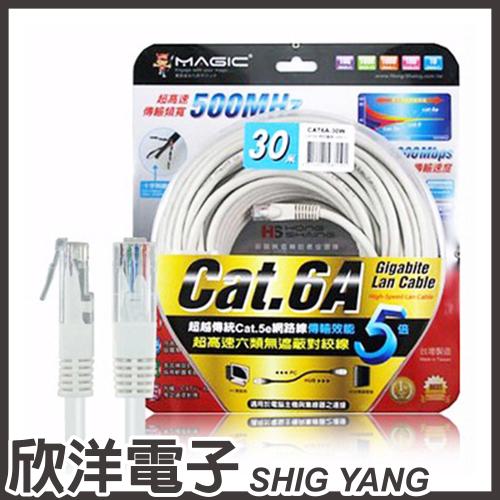 【客訂賣場】Magic 鴻象 超高速傳輸網路線 (CAT6A-30) 圓線 30M/30米/30公尺 18條 廠商直寄