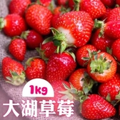 【南紡購物中心】家購網嚴選-鮮豔欲滴大湖香水草莓1公斤X2盒(1號果)