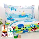 鴻宇 防蟎枕套2入 夢想號 防蟎抗菌 美國棉授權品牌 台灣製1573