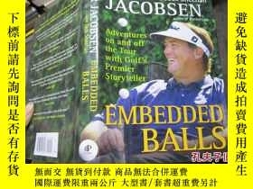 二手書博民逛書店embedded罕見balls 精 211319636 shee