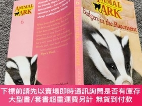 二手書博民逛書店Badger罕見in the Basement (Animal Ark 6)Y22224 Daniels, L