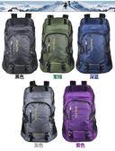50升運動時尚雙肩包男女學生書包運動戶外登山包旅行旅遊大背包 可可鞋櫃