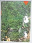 【書寶二手書T9/歷史_QNS】世界遺蹟大觀(9)中國五千年的文化遺產_附殼
