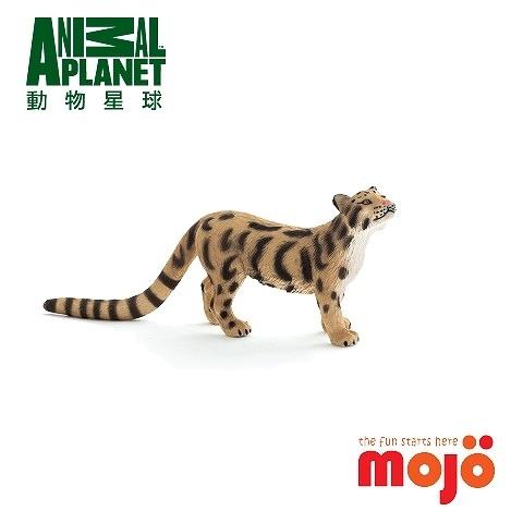 《MOJO FUN動物模型》動物星球頻道獨家授權 - 雲豹