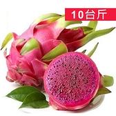香甜紅肉紅龍果(10台斤)(約10~12顆)