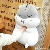 可愛倉鼠公仔布娃娃玩偶韓國毛絨玩具睡覺暖手抱枕生日禮物搞怪萌YQS  小確幸生活館